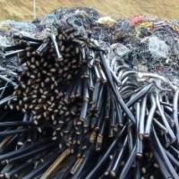 高新区低压电缆回收 高新区电缆回收价格表